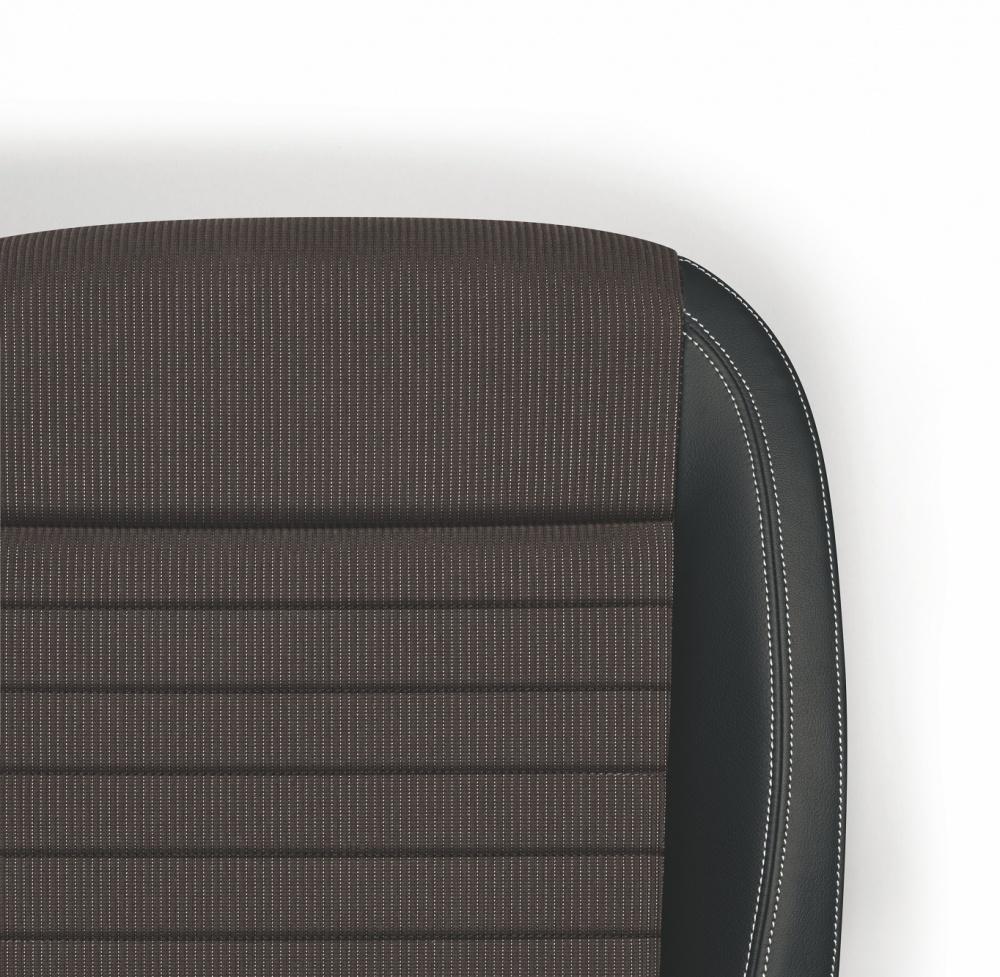 Leder Stoff Sitze Rapid 2017